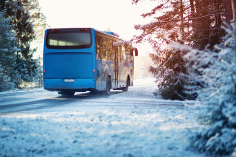 Busreisen Gruppenreisen Shutterstock 1